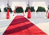 VIP & Red Carpet